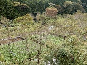 県景観賞1.JPG